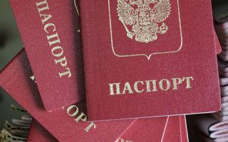 Программы для получения гражданства рф в 2020 году — переселению соотечественников, воссоединение семьи