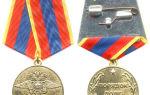 Как получить ветерана мвд россии в 2020 году — медаль, льготы