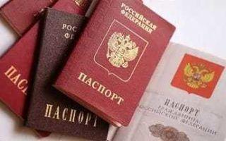 Носитель русского языка и гражданство россии 2020