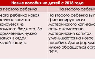 Как рассчитывается прожиточный минимум в 2020 году — в россии, на ребенка, на семью для получения пособий