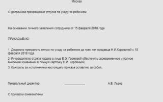 Заявление в школу на отпуск ребенка в 2020 году — директору, образец