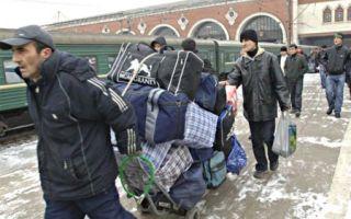 Сезонная миграция в 2020 году — что это такое, примеры, россии, населения