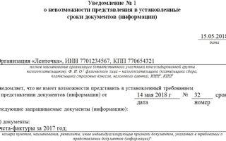 Ходатайство о продлении срока предоставления документов в налоговую в 2020 году — образец, пример