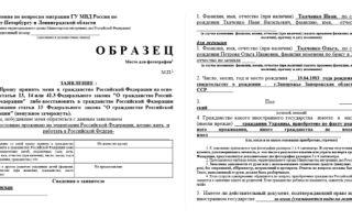 Проверка гражданства рф через госуслуги в 2020 году — бланк, в упрощенном порядке, жителям, официальный сайт