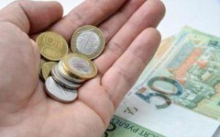 Бюджет прожиточного минимума в 2020 году — что это такое, сколько, в россии