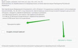 Жалоба президенту в 2020 году — россии в электронном виде официальный сайт, написать, рф лично путину в.в.