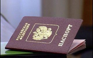 Виды гражданства в рф в 2020 году — получения, приобретения, их особенности, по законодательству