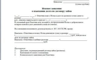 Исковое заявление о взыскании займа в 2020 году — долга по договору, образец, денежных средств
