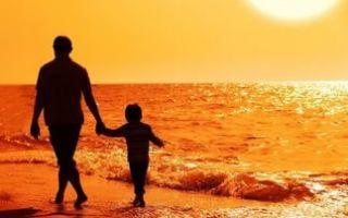 Исковое заявление о лишении родительских прав отца в 2020 году — за неуплату алиментов, ребенка