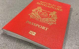 Гражданство сингапура в 2020 году — как получить, россии, несовершеннолетних, плюсы и минусы
