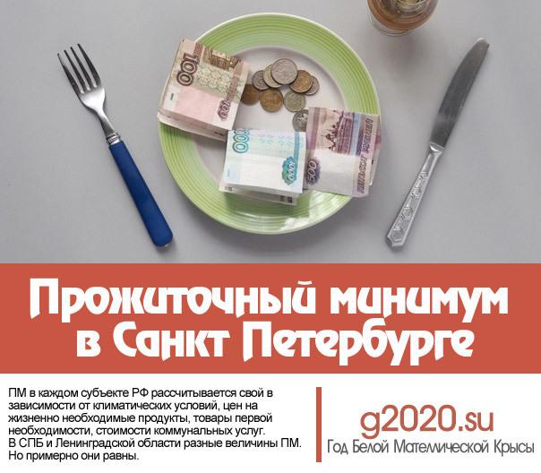 Доплата пенсионерам до прожиточного минимума в 2020 году - что это такое, какая, СПб, Москва