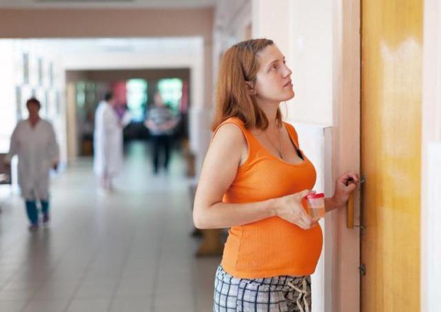 Что положено беременным женщинам бесплатно по закону в 2020 году - Москва