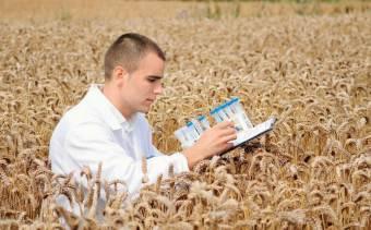 Программа Молодой специалист на селе 2020 году - поддержки, хозяйства, местности, обеспечения