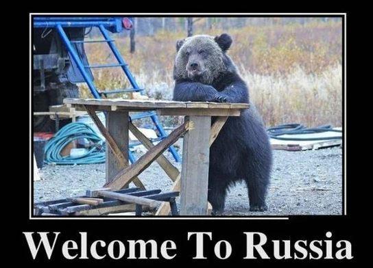 Миграция в США (Америку) в 2020 году - России, статистика, причины