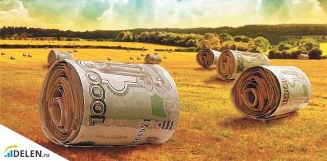 Субсидии фермерам в 2020 году - начинающим, когда подавать, хозяйств, молодым, как получить