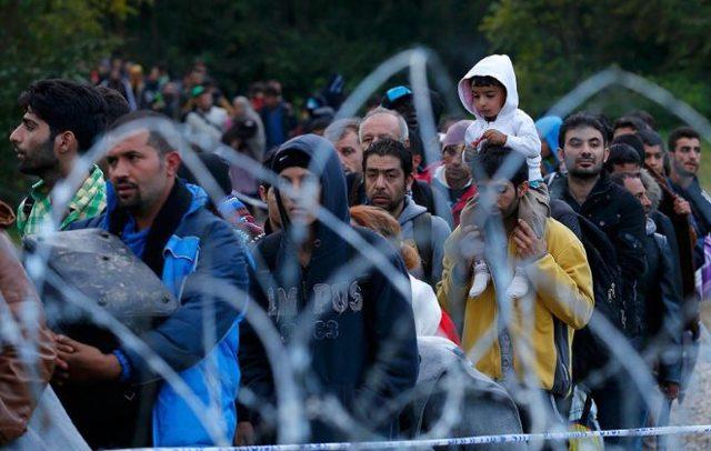 Международная миграция в 2020 году - что это такое, населения, последствия, виды, причины