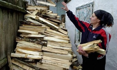 Субсидия на дрова в 2020 году - как оформить, кому положена, начисляется, какую сумму выплатят