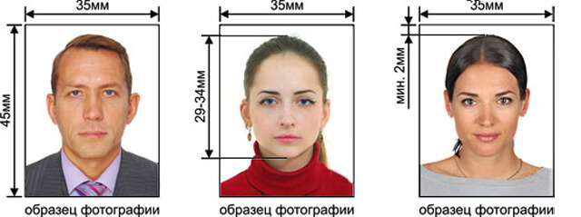 Оформление гражданства РФ в 2020 году - как получить, основания приобретения, запись, помощь, порядок