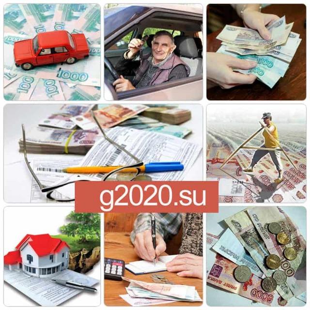 Освобождаются ли ветераны труда от земельного налога в 2020 году - уплаты